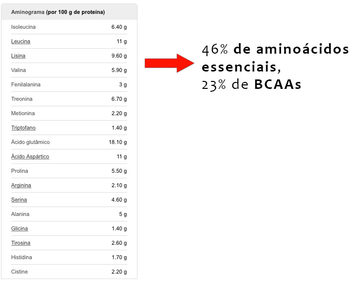 aminograma whey protein