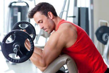 exercício para os bíceps