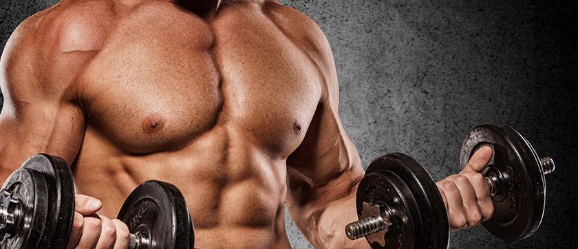 Cortisol, Musculação e Perda de massa muscular