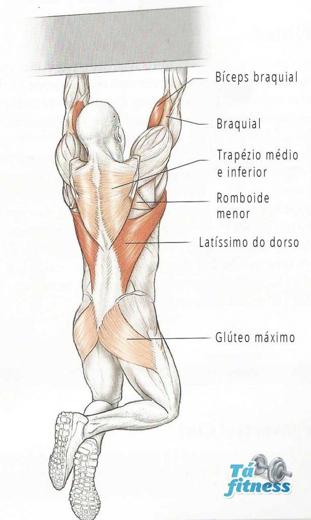 elevação para bíceps em casa