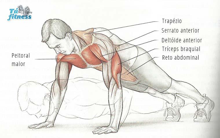 flexão de tríceps em casa