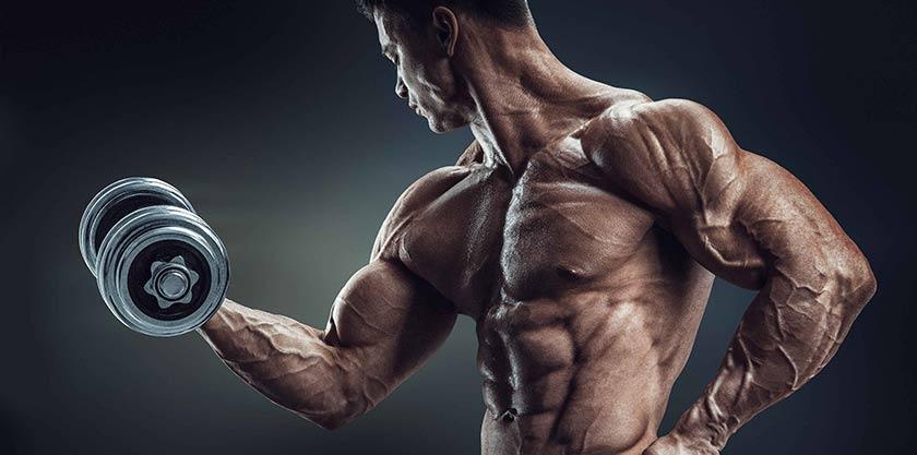 Zinco e magnésio aumentam testosterona?