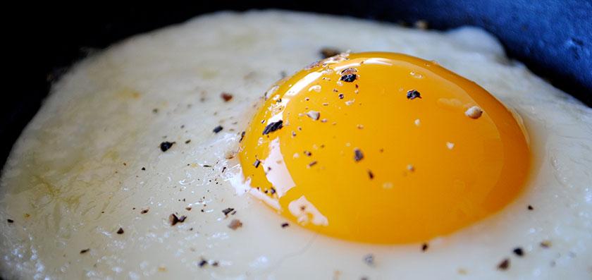 Os ovos aumentam o colesterol?